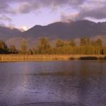Lake Matheson @ Fox Glacier, New Zealand