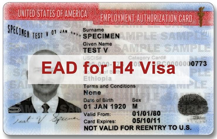 H4 visa work authorization, H4 visa, work permit For H4 visa