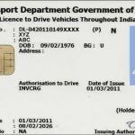 Delhi driving license