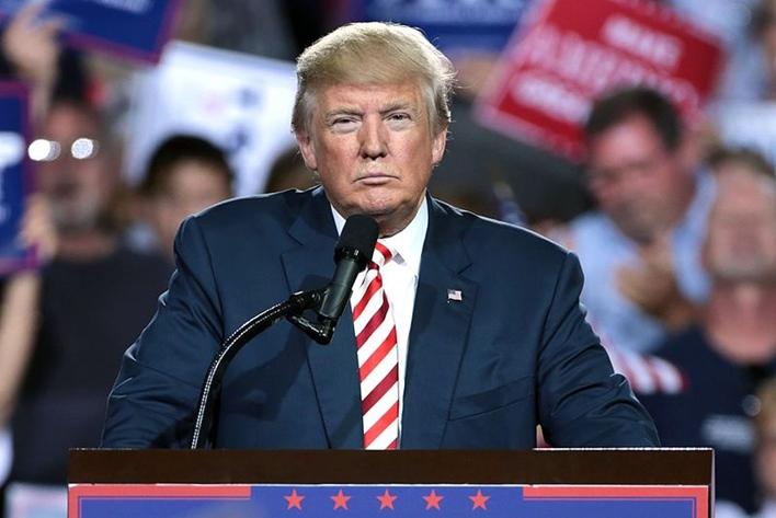 Trump's Green Card Suspension, Trump's Europe Travel Ban, Trump Travel Ban, Merit Based Immigration And Green Card System, USA H1B Visa, US citizenship by birth